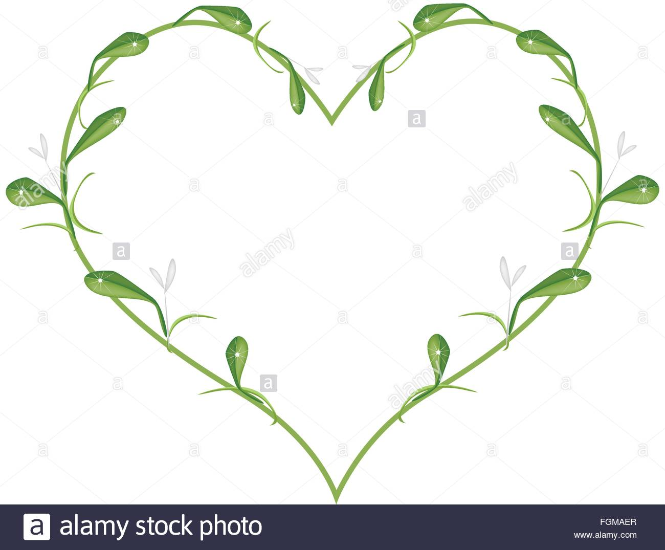 Love Concept, Illustration Of Lovely Mistletoe Or Viscum Album.