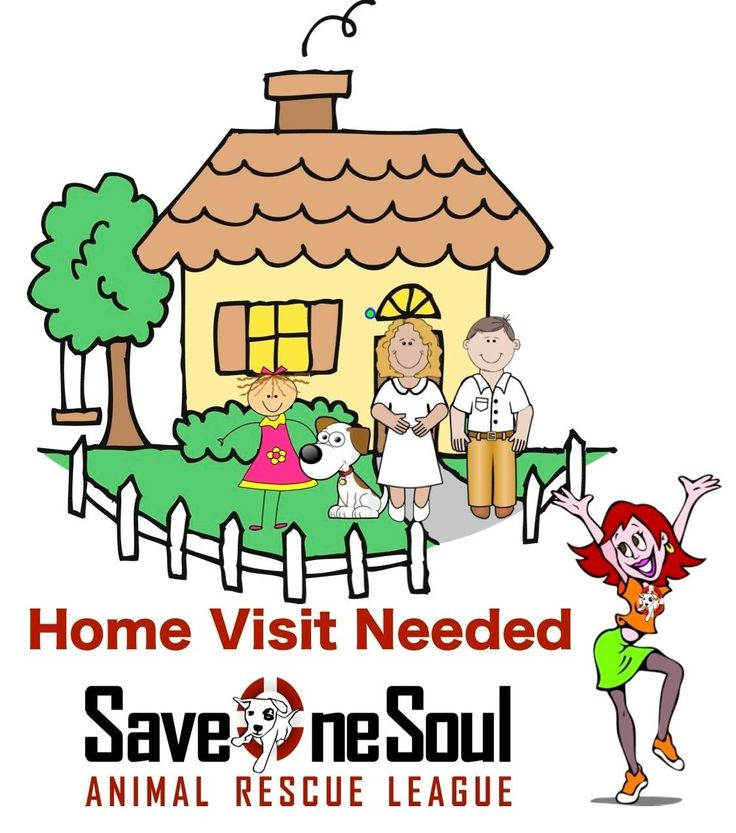1000+ images about About Save One Soul Animal Rescue League on.