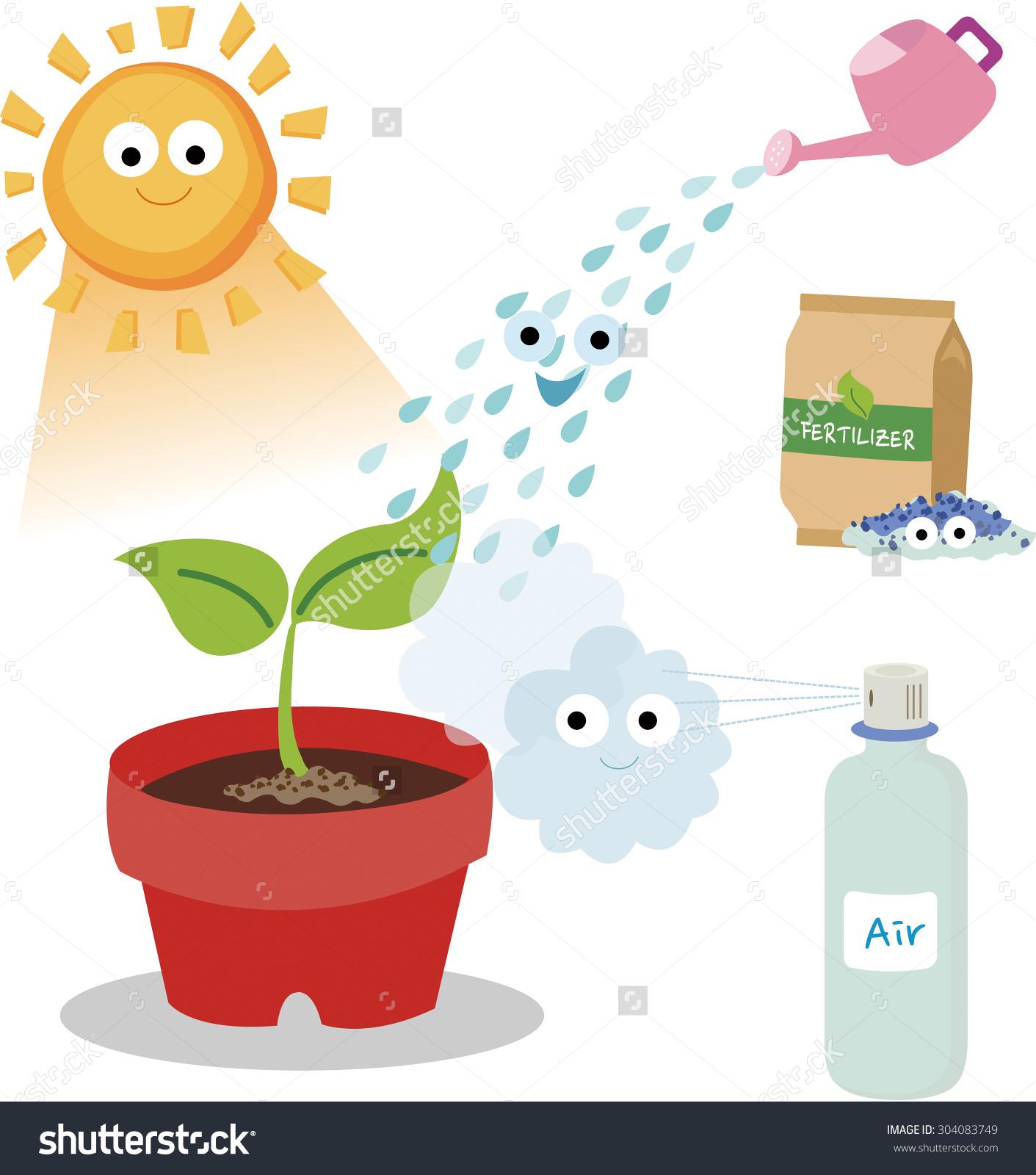 Vital Needs Plant Plants Need Sunlight Stock.