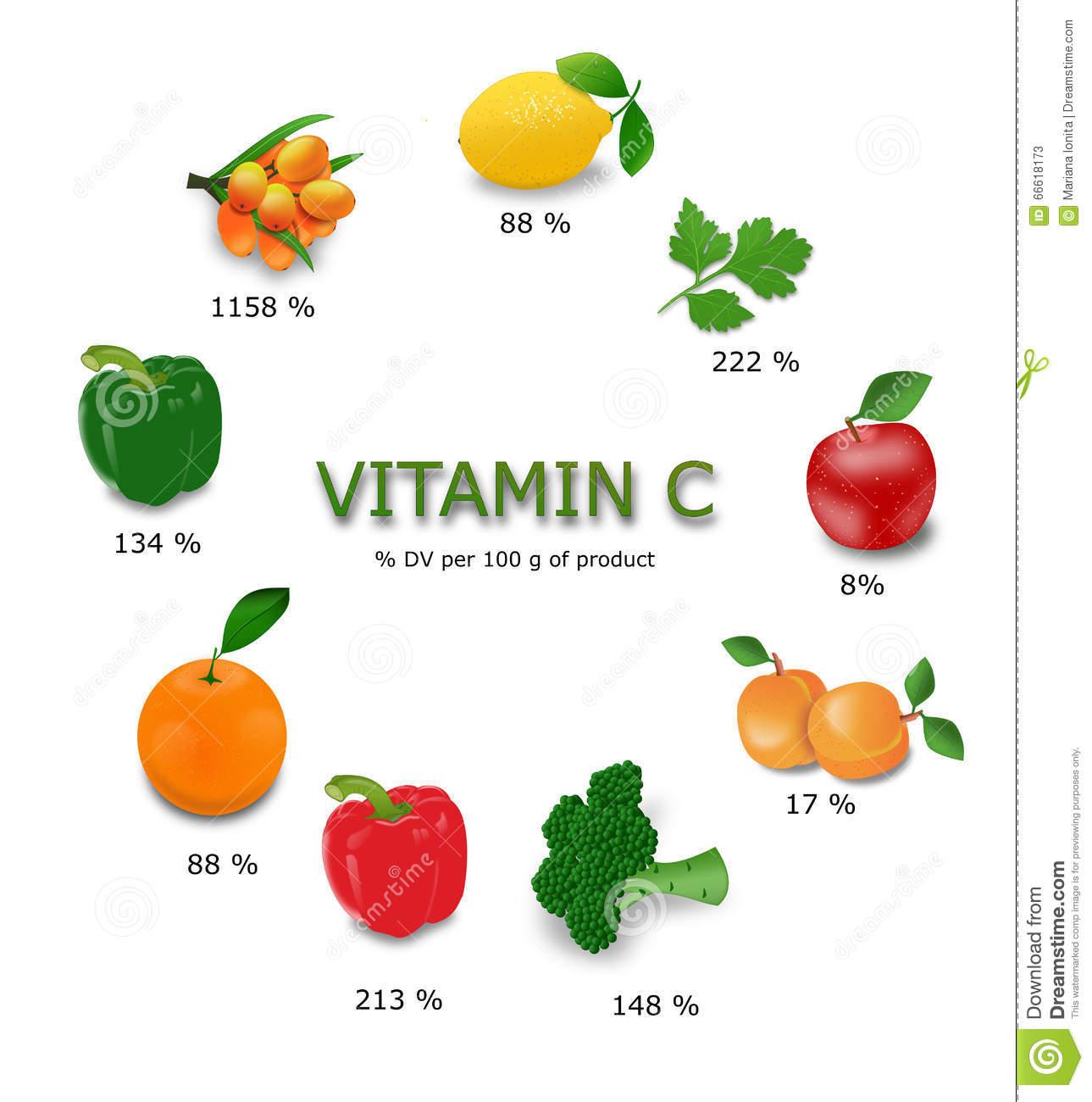 Vitamin C Sources Stock Illustration.