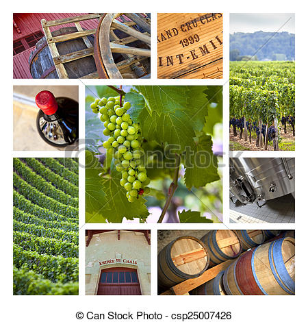 Stock Photo of Viticulture.