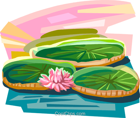 lily nature livre
