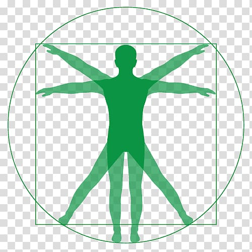 Vitruvian Man Renaissance graphics Drawing, gentle touch.