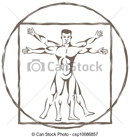 Clipart Vector of vitruvian man csp10086857.