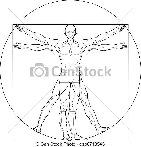 Vectors of Vitruvian man.