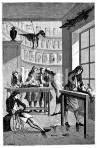 Antique Illustration of Vivisection Lesson premium clipart.