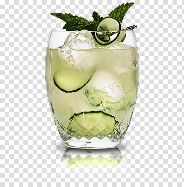 Rickey Caipiroska Mojito Caipirinha Vodka tonic, mojito.