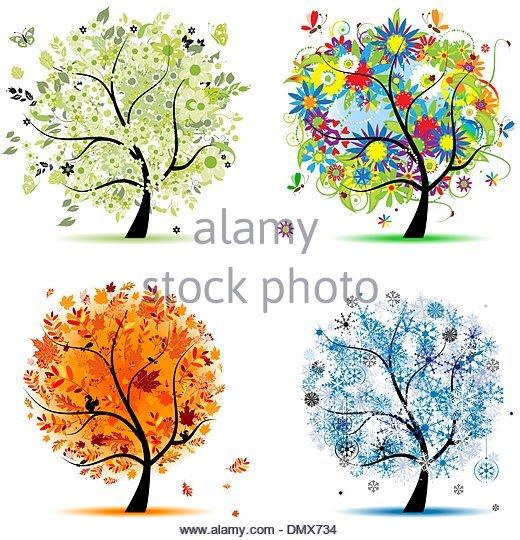 Rowan Bush Cut Out Stock Images & Pictures.
