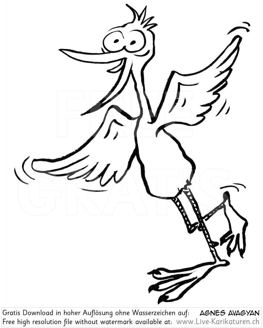 Vogel lustig Schnabel Beine.