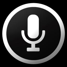 Voice search Icon.