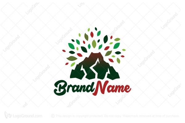 Exclusive Logo 32804, Bloom Volcano Logo.