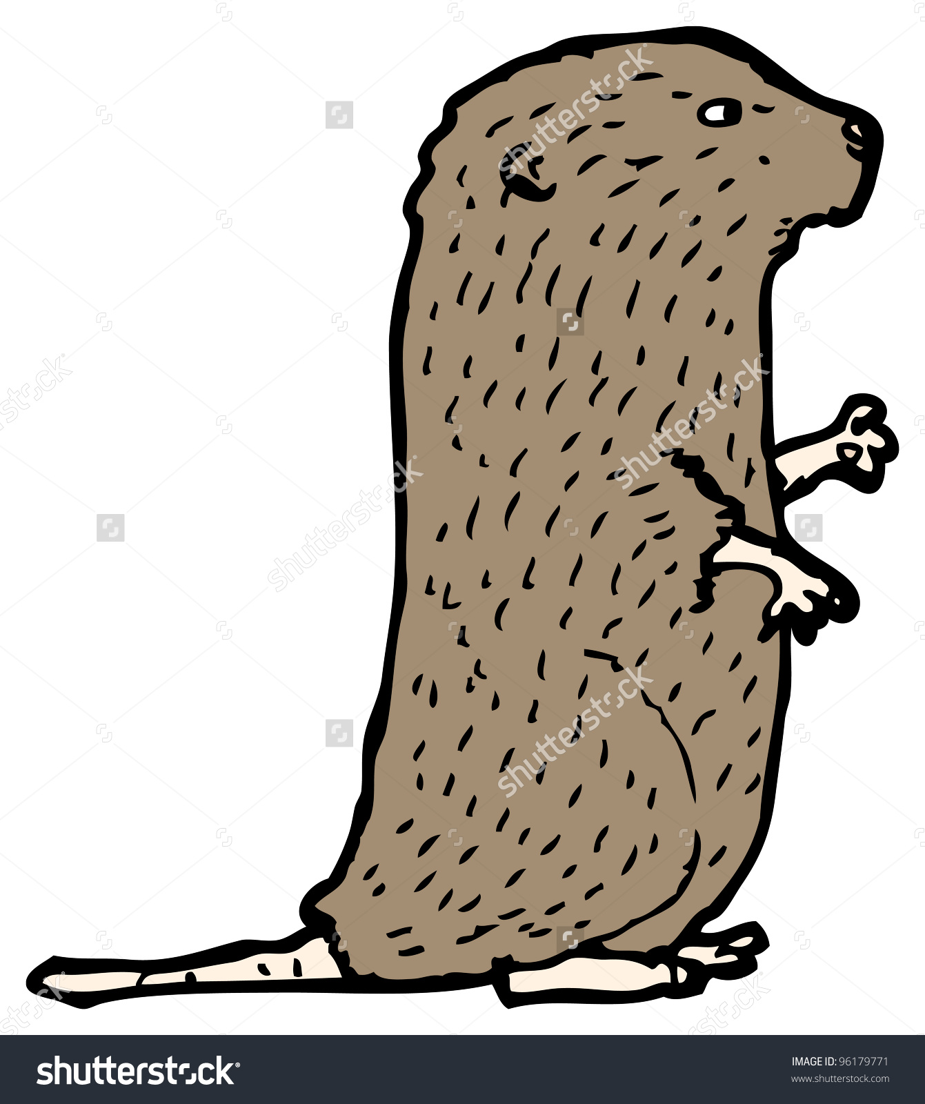 Water Vole Cartoon Stock Illustration 96179771.