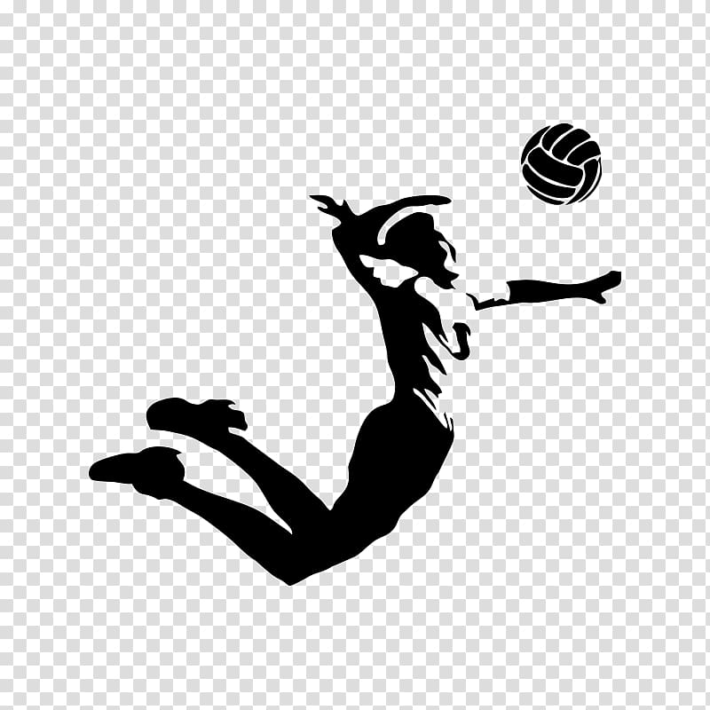 Volleyball VC Zenit.