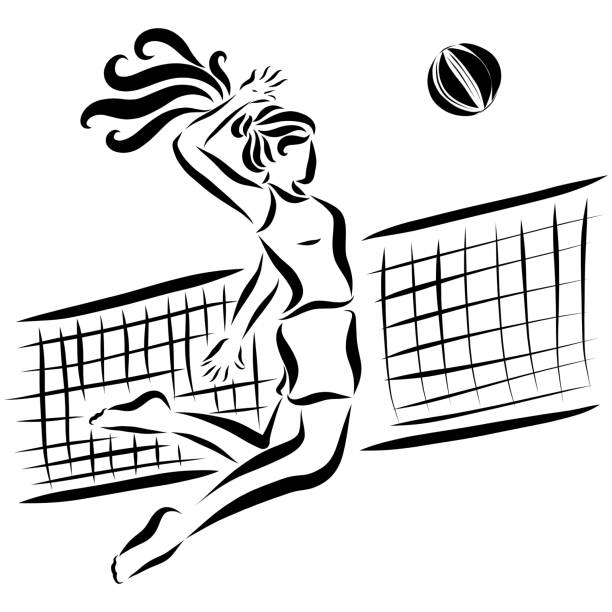 Best Volleyball Net Illustrations, Royalty.