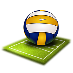 Volleyball And Court Icon, PNG ClipArt Image.