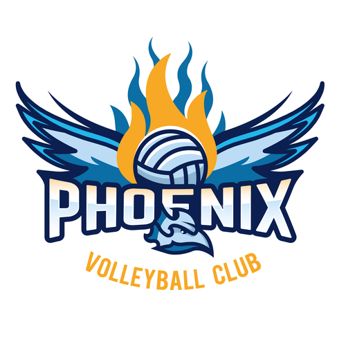 Volleyball logos: the best volleyball logo images.