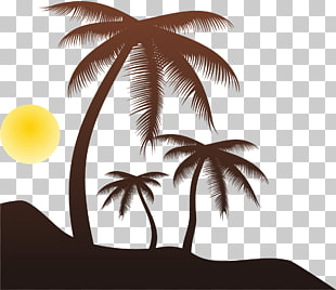 568 beach Silhouette PNG cliparts for free download.