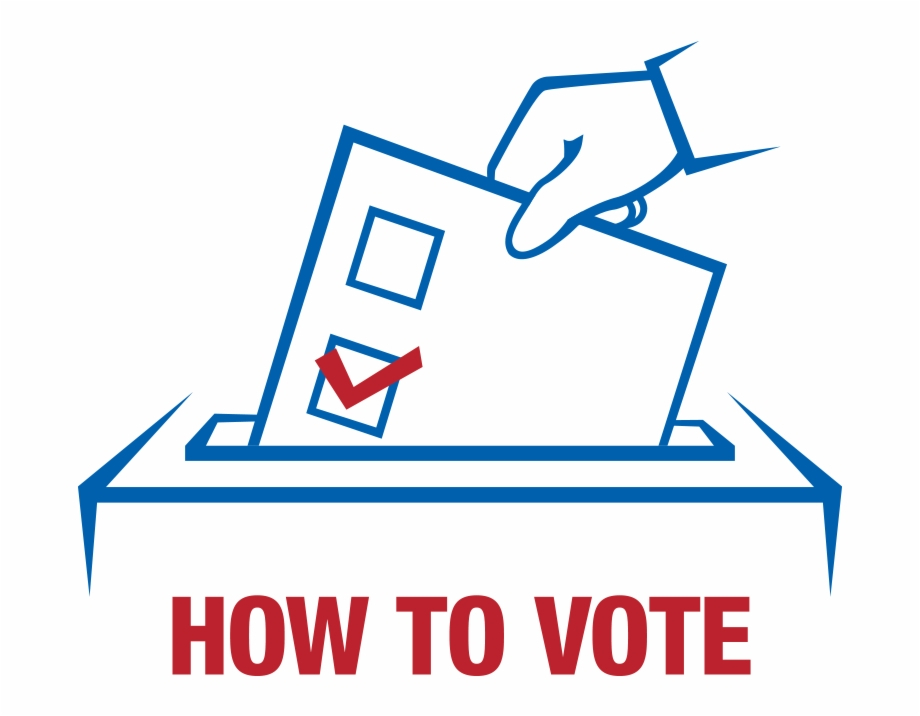 How To Vote.