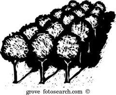 Grove Clip Art Illustrations. 862 grove clipart EPS vector.