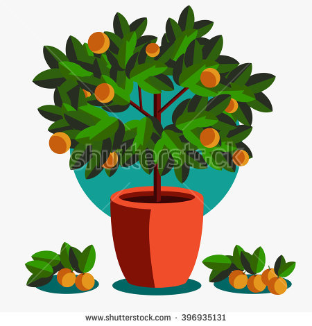 Grove Stock Vectors, Images & Vector Art.