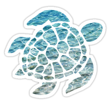 Vsco turtle clipart Transparent pictures on F.
