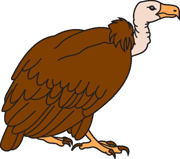 Cute Vulture Clipart.