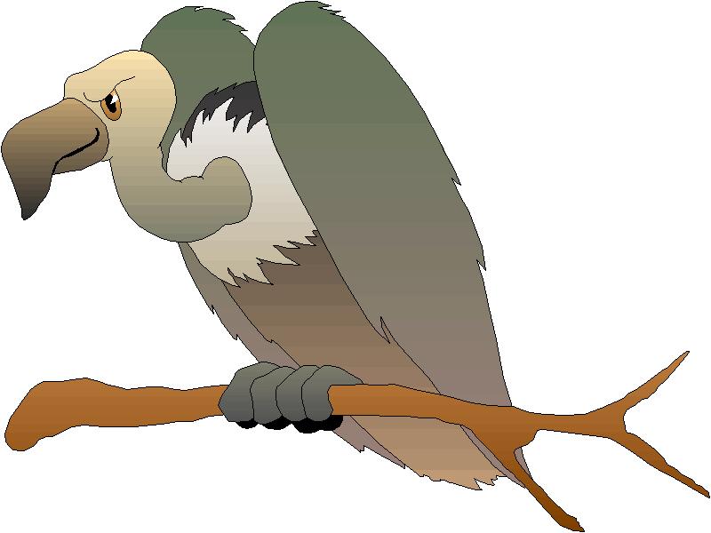Vulture Clipart.