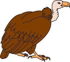 19 Best Cartoon Vulture Tattoo images.