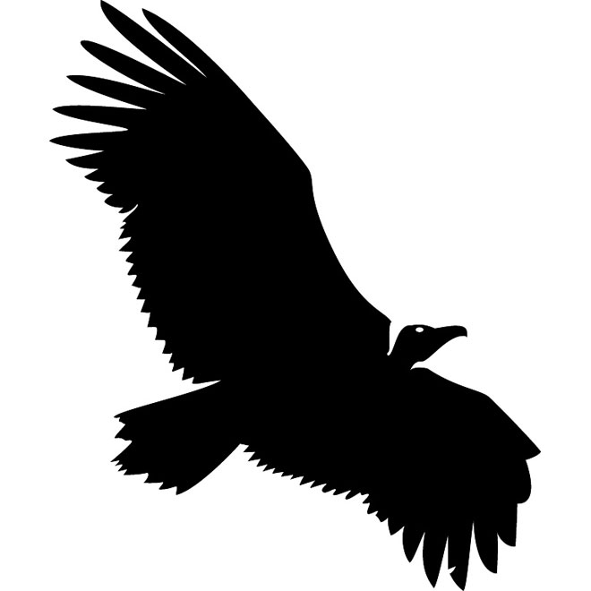 Vulture Silhouette Free Vector.