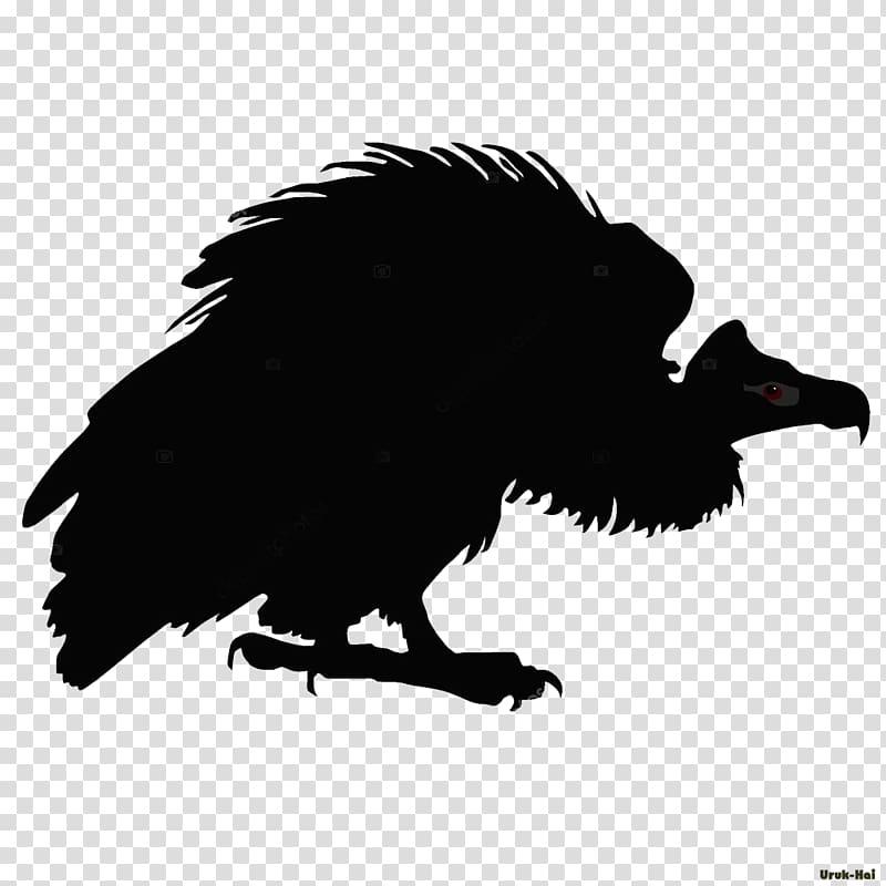 Turkey vulture Drawing Line art, vulture transparent.