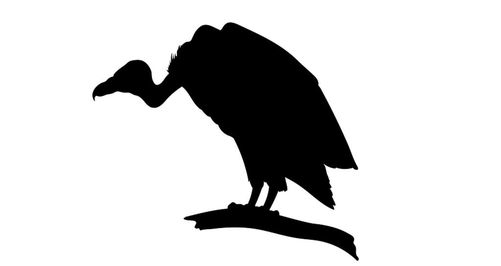 Vulture Silhouette at GetDrawings.com.