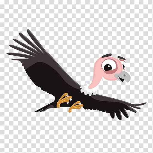 Turkey vulture , cartoons transparent background PNG clipart.