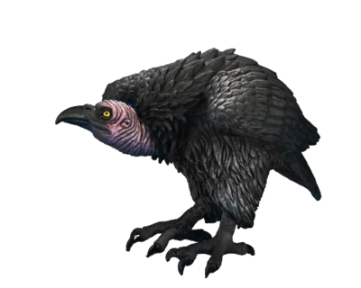 Download Free png Vulture.