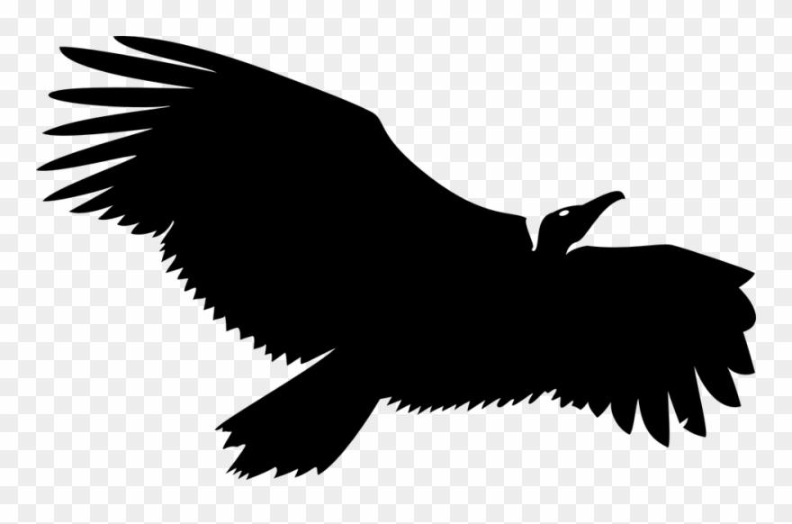 Vulture Logo Clipart (#1313149).