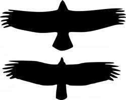 Free Vulture Cliparts, Download Free Clip Art, Free Clip Art.