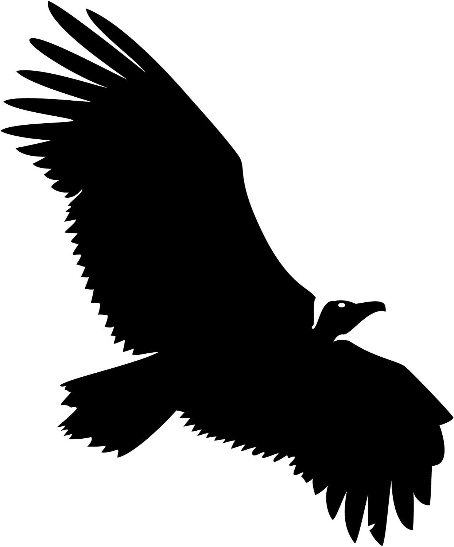 Clip art vultures.