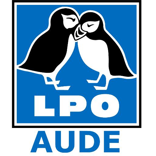 """LPO Aude on Twitter: """"#gruissan Des plages magnifiques sous le."""