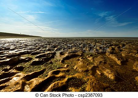 Stock Photos of Wadden Sea in Moddergat, the Netherlands.