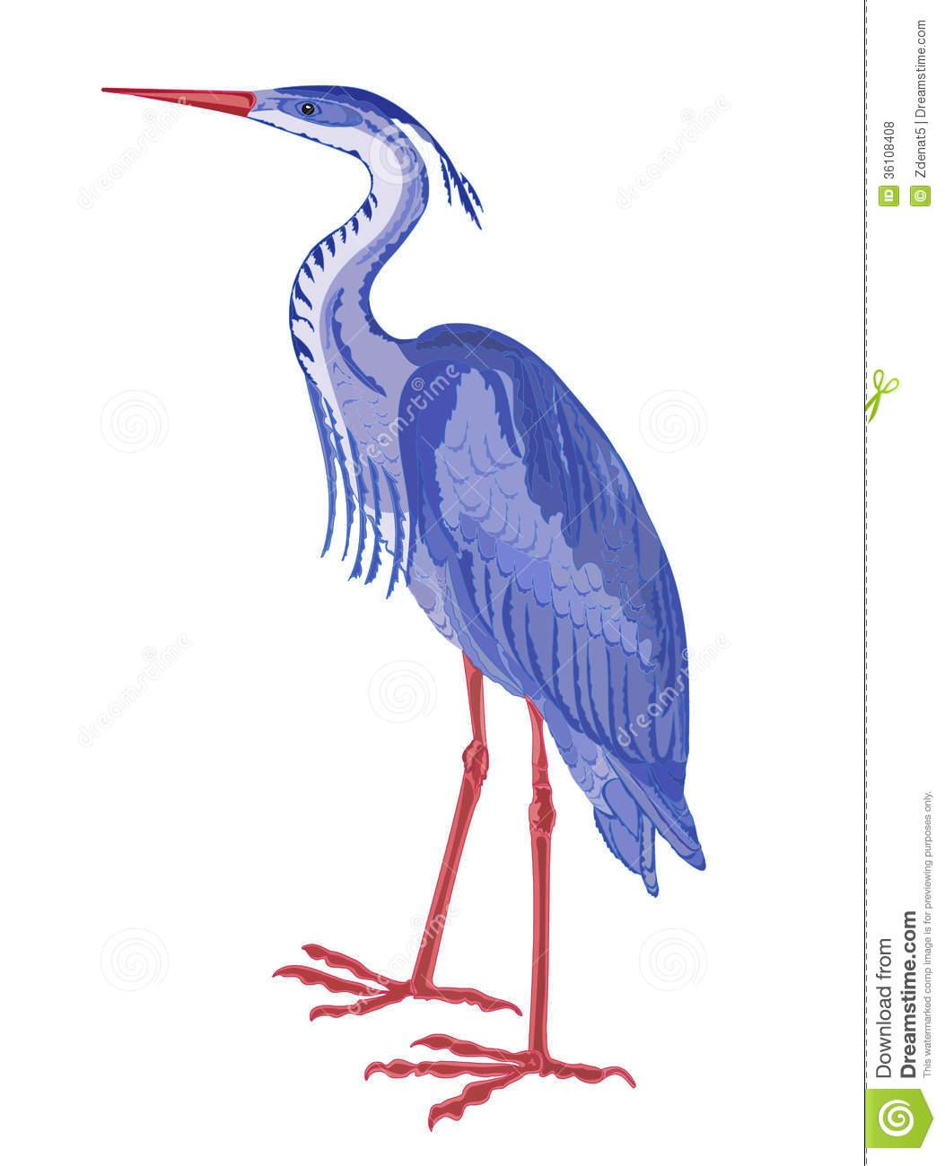 Wadingbird.