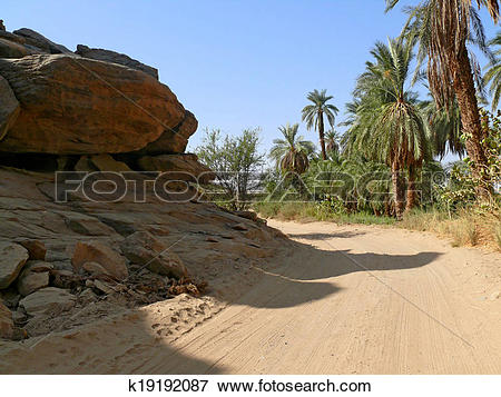 Picture of The road between Wadi Halfa and Khartoum. k19192087.