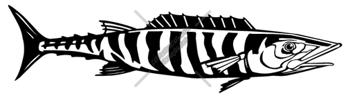 Wahoo clipart » Clipart Station.