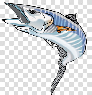 Wahoo PNG clipart images free download.