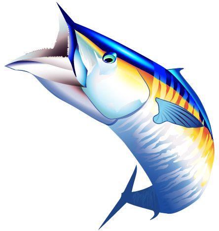 Sport Fish Clipart.