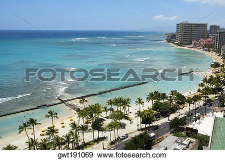 Stock Photograph of Aerial view of palm trees on the beach.
