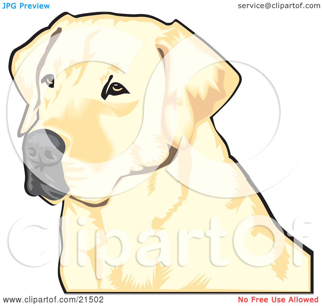Clipart Illustration of a Yellow Labrador Retriever Dog With A.