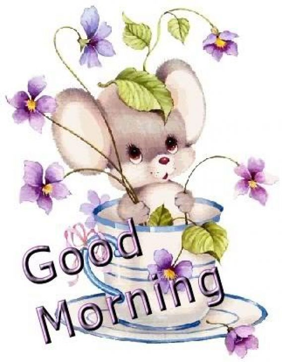 Morning clipart cute, Morning cute Transparent FREE for.