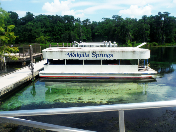 The Two RV Gypsies at Wakulla Springs State Park in Florida.