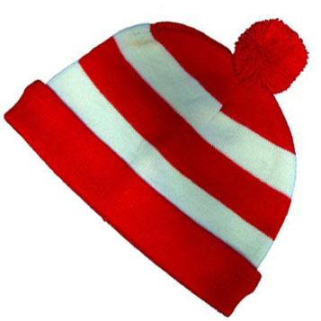 Waldo hat.