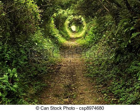Stock Fotografie von Tunnel, bezaubert, wald, Pfad.