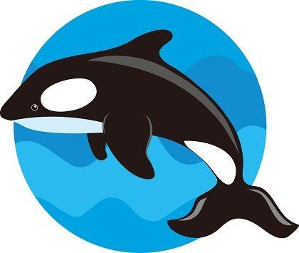 Cute Whale Clipart.